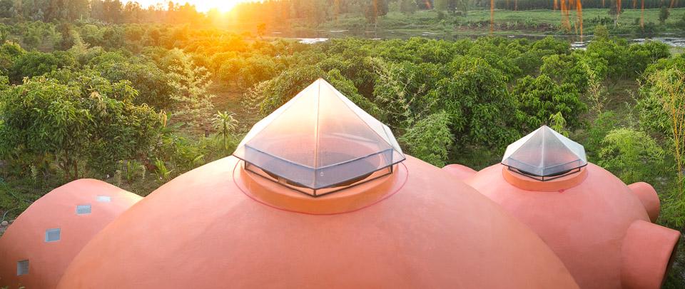 Sunrise over the mango farm.