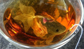 Goldfish_Tea_Bags+(1)