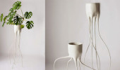 Monstera-plant_pot+(6)