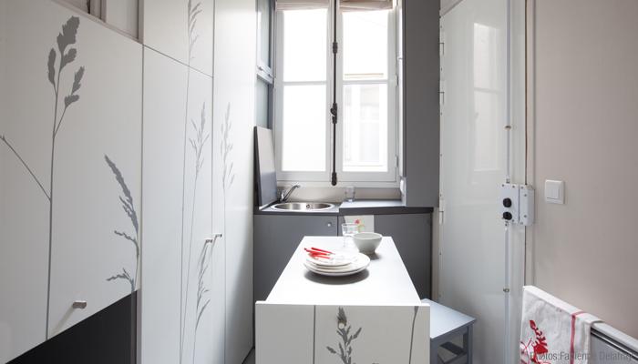 Space Saving with Hidden Amenities - Tiny 8 sqm Parisian Apartment  (14)