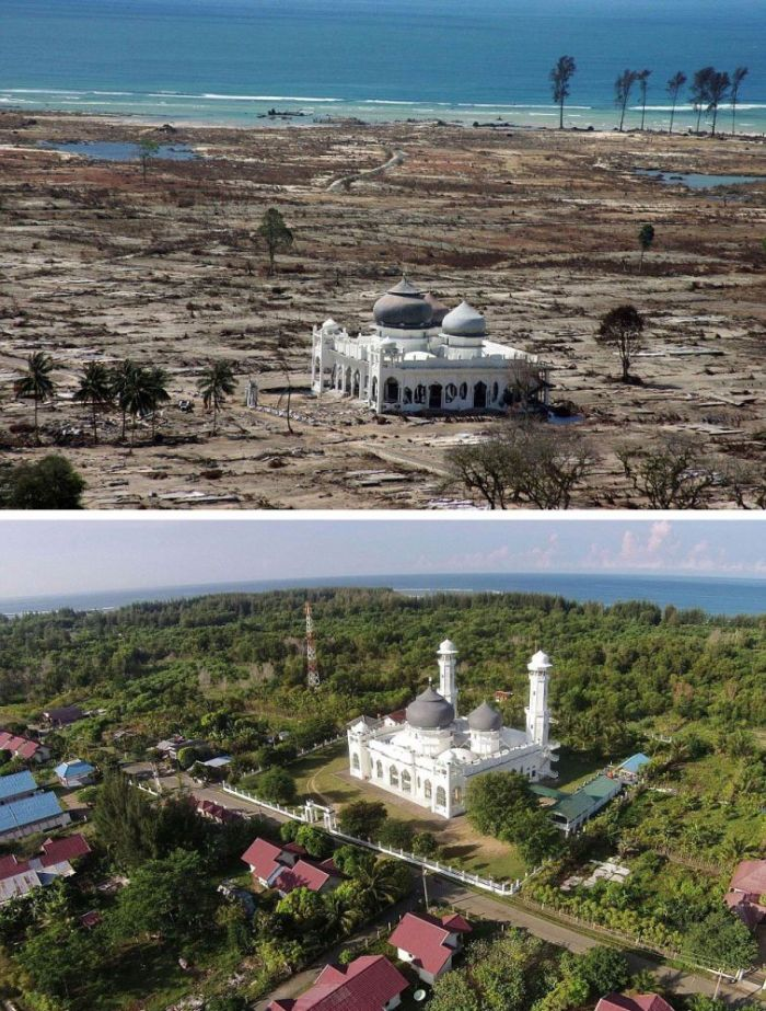 Devastating Indian Ocean tsunami, 10 years later (6)