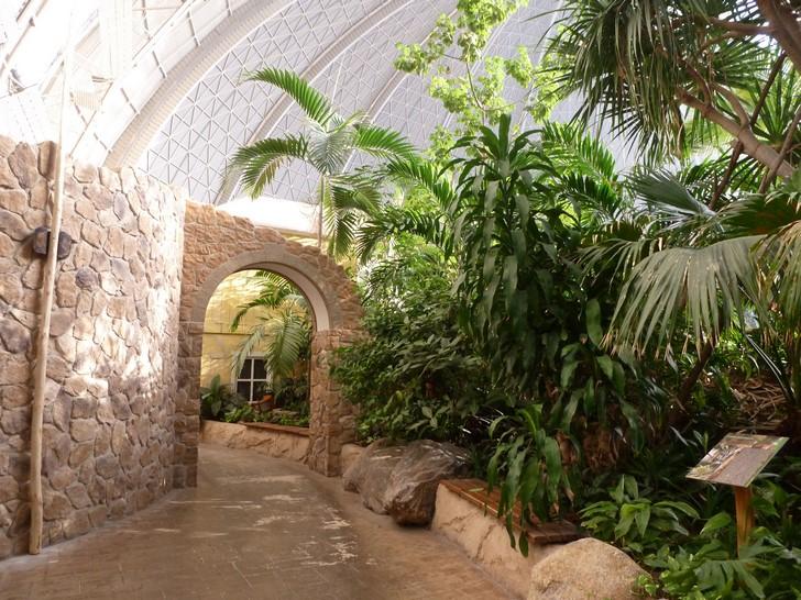 Tropical Islands Resort3